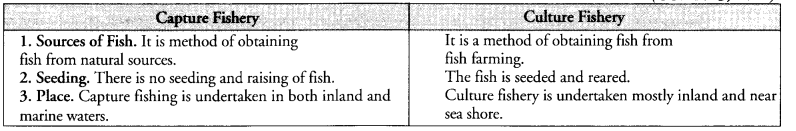 NCERT Exemplar Solutions for Class 9 Science Chapter 15 Improvement in Food Resources image - 4
