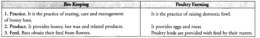 NCERT Exemplar Solutions for Class 9 Science Chapter 15 Improvement in Food Resources image - 5
