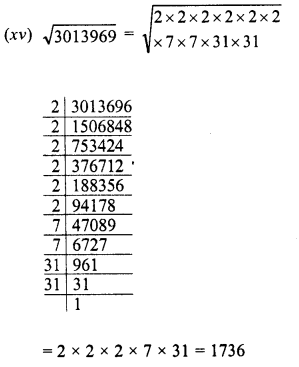 RD Sharma Class 8 Solutions Chapter 3 Squares and Square Roots Ex 3.4 7