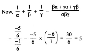 RS Aggarwal Class 10 Solutions Chapter 2 Polynomials Test Yourself 10