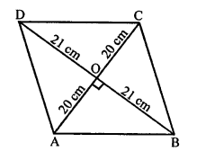 RS Aggarwal Class 10 Solutions Chapter 4 Triangles Ex 4E 24