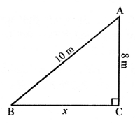 RS Aggarwal Class 10 Solutions Chapter 4 Triangles Ex 4E 5