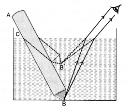 HOTS Questions for Class 10 Science Chapter 10 Light Reflection and Refraction image - 7