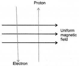 NCERT Exemplar Solutions for Class 10 Science Chapter 13 Magnetic Effects of Electric Current image - 3
