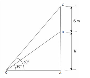 RS Aggarwal Solutions Class 10 Chapter 14Height and Distance Ex 14a 12