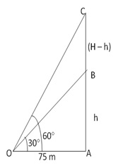 RS Aggarwal Solutions Class 10 Chapter 14Height and Distance Ex 14a 16