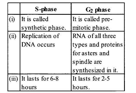 NCERT Solutions for Class 11 Biology Chapter 10 Cell Cycle and Cell Division 5