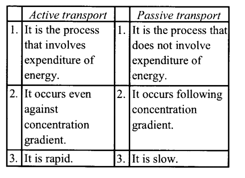 NCERT Solutions for Class 11 Biology Chapter 11 Transport in Plants 10