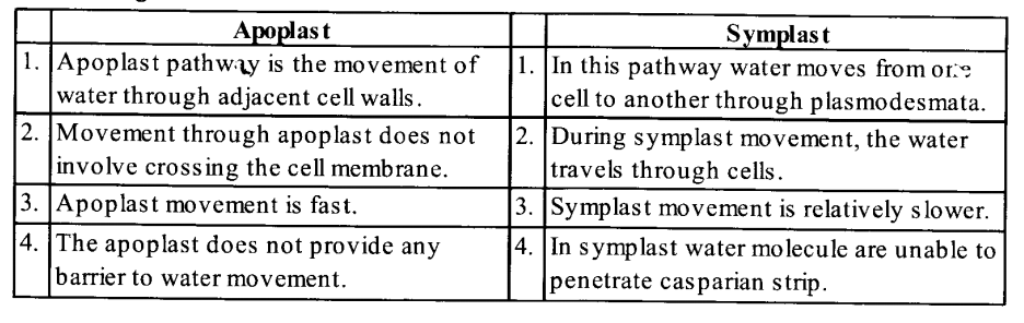 NCERT Solutions for Class 11 Biology Chapter 11 Transport in Plants 5