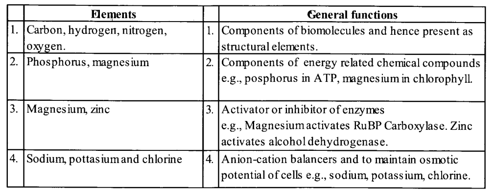 NCERT Solutions for Class 11 Biology Chapter 12 Mineral Nutrition 4