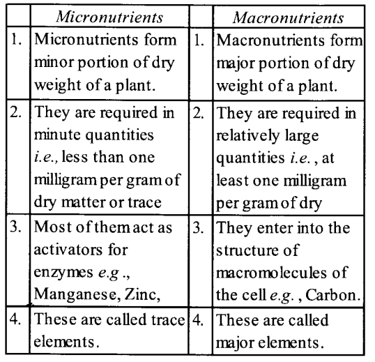 NCERT Solutions for Class 11 Biology Chapter 12 Mineral Nutrition 5