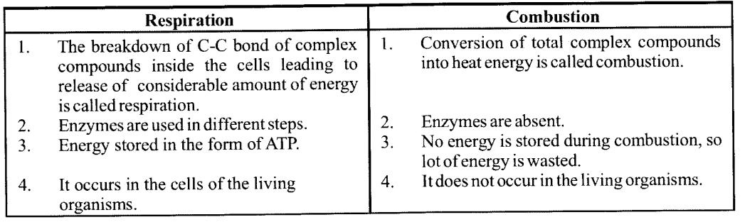 NCERT Solutions for Class 11 Biology Chapter 14 Respiration in Plants 1