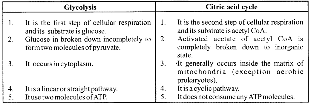 NCERT Solutions for Class 11 Biology Chapter 14 Respiration in Plants 10
