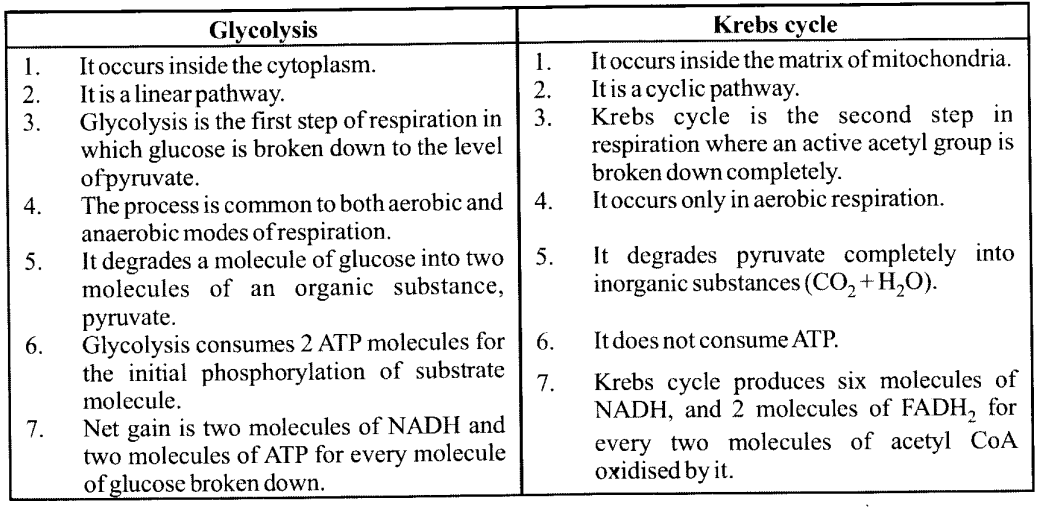 NCERT Solutions for Class 11 Biology Chapter 14 Respiration in Plants 2
