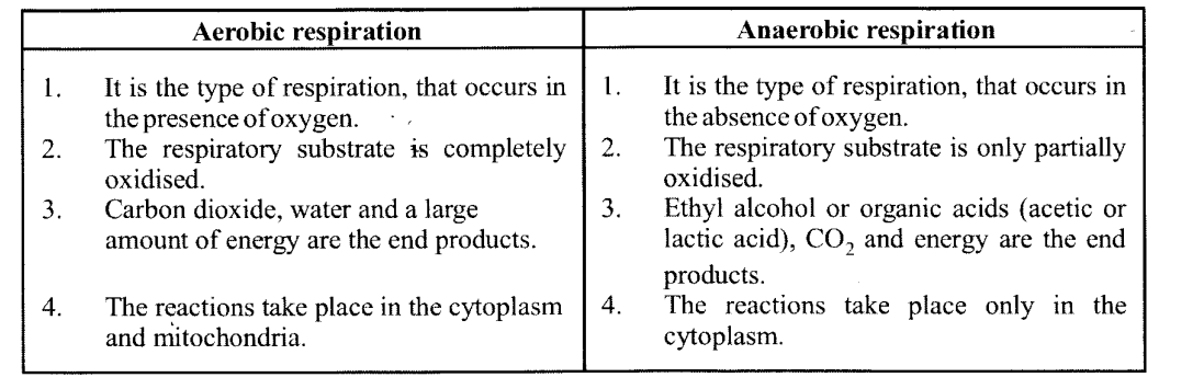 NCERT Solutions for Class 11 Biology Chapter 14 Respiration in Plants 8