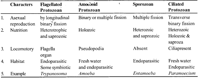 NCERT Solutions for Class 11 Biology Chapter 2 Biological Classification 1