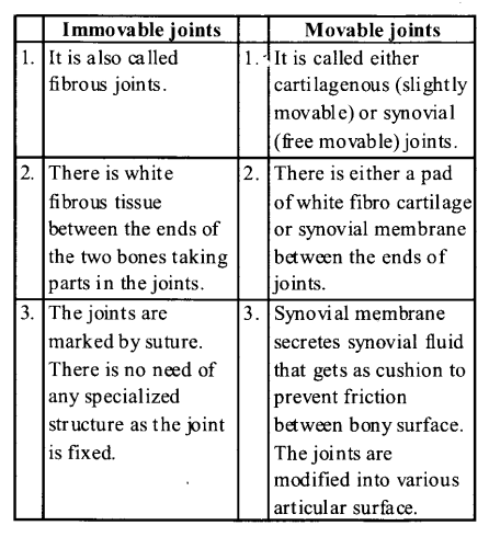 NCERT Solutions for Class 11 Biology Chapter 20 Locomotion and Movement 10