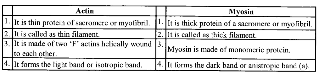 NCERT Solutions for Class 11 Biology Chapter 20 Locomotion and Movement 2