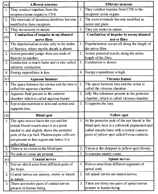 NCERT Solutions for Class 11 Biology Chapter 21 Neural control and co-ordination 11