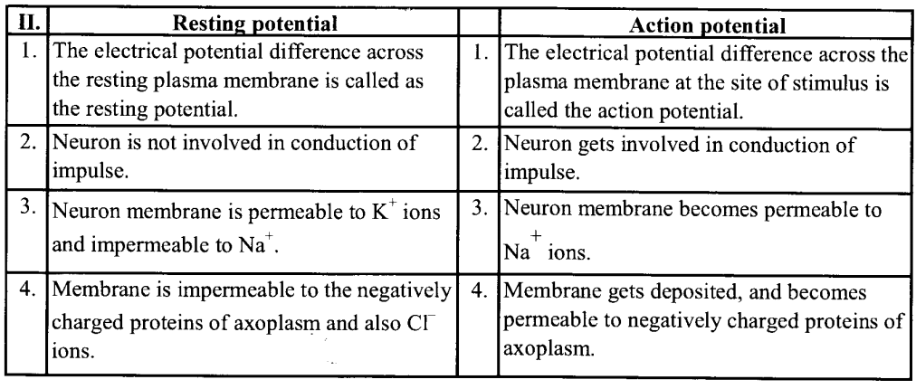 NCERT Solutions for Class 11 Biology Chapter 21 Neural control and co-ordination 4
