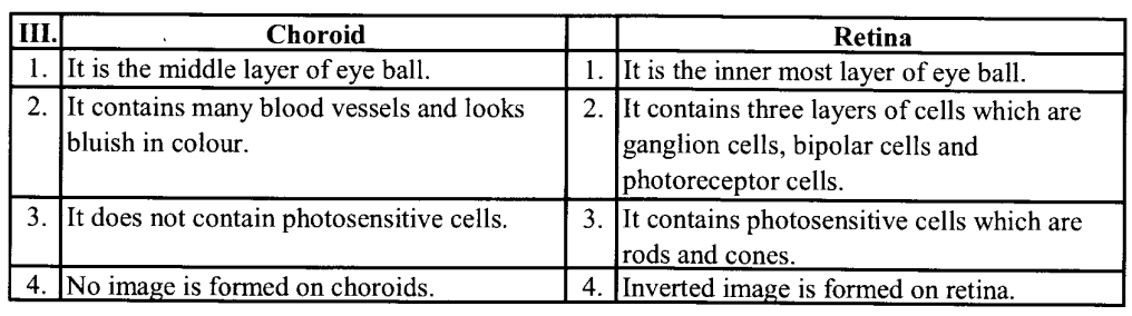 NCERT Solutions for Class 11 Biology Chapter 21 Neural control and co-ordination 5