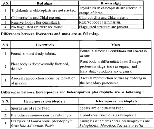 NCERT Solutions for Class 11 Biology Chapter 3 Plant Kingdom 1