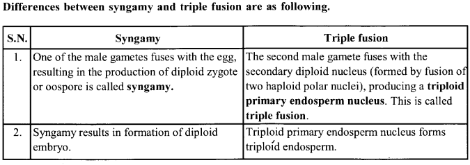 NCERT Solutions for Class 11 Biology Chapter 3 Plant Kingdom 2