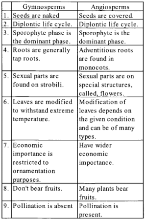 NCERT Solutions for Class 11 Biology Chapter 3 Plant Kingdom 5