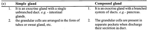 NCERT Solutions for Class 11 Biology Chapter 7 Structural Organization in Animals 11