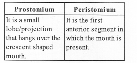 NCERT Solutions for Class 11 Biology Chapter 7 Structural Organization in Animals 3