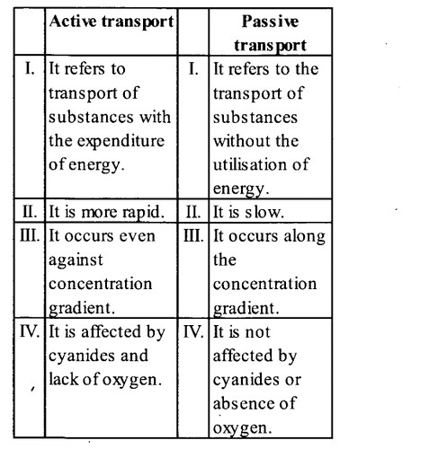 NCERT Solutions for Class 11 Biology Chapter 8 Cell The Unit of Life 7