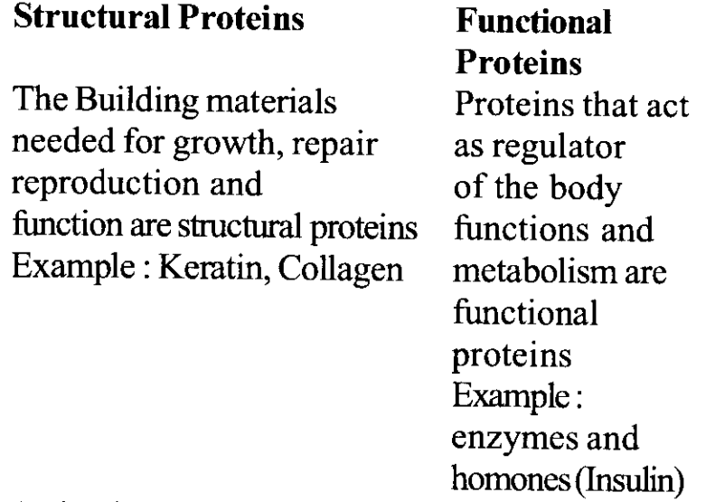 NCERT Solutions for Class 11 Biology Chapter 9 Biomolecules 11