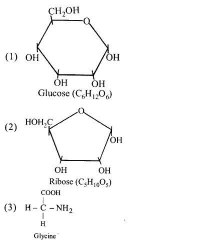 NCERT Solutions for Class 11 Biology Chapter 9 Biomolecules 2