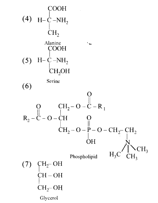 NCERT Solutions for Class 11 Biology Chapter 9 Biomolecules 3