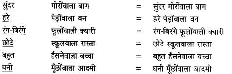 NCERT Solutions for Class 6 Hindi Vasant Chapter 1 वह चिड़िया जो 3