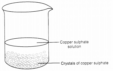 NCERT Solutions for Class 7 Science Chapter 6 Physical and Chemical Changes Q 8.