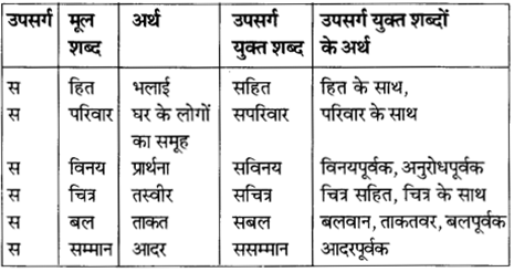 NCERT Solutions for Class 8 Hindi Vasant Chapter 11 1
