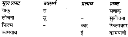 NCERT Solutions for Class 8 Hindi Vasant Chapter 11 2