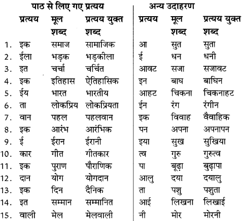 NCERT Solutions for Class 8 Hindi Vasant Chapter 11 5