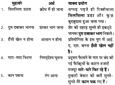 NCERT Solutions for Class 8 Hindi Vasant Chapter 14 अकबरी लोटा 1
