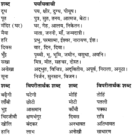 NCERT Solutions for Class 8 Hindi Vasant Chapter 15 सूर के पद 2