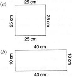 NCERT Solutions for Class 6 Maths Chapter 10 Mensuration 9