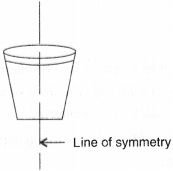 NCERT Solutions for Class 6 Maths Chapter 13 Symmetry 4