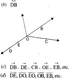 NCERT Solutions for Class 6 Maths Chapter 4 Basic Geometrical Ideas 1