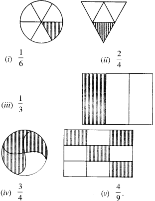 NCERT Solutions for Class 6 Maths Chapter 7 Fractions 6