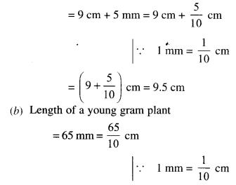 NCERT Solutions for Class 6 Maths Chapter 8 Decimals 14