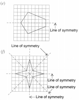 NCERT Solutions for Class 6 Maths Chapter 13 Symmetry 35