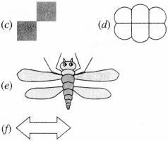 NCERT Solutions for Class 6 Maths Chapter 13 Symmetry 40