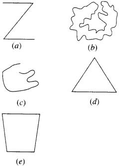 NCERT Solutions for Class 6 Maths Chapter 4 Basic Geometrical Ideas 10