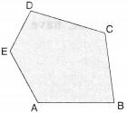 NCERT Solutions for Class 6 Maths Chapter 4 Basic Geometrical Ideas 13